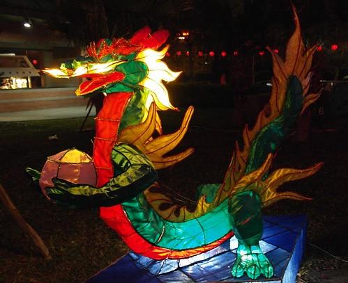 床墊魚分享龍燈籠1