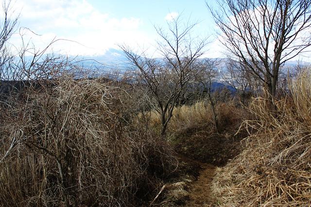 矢倉岳_38