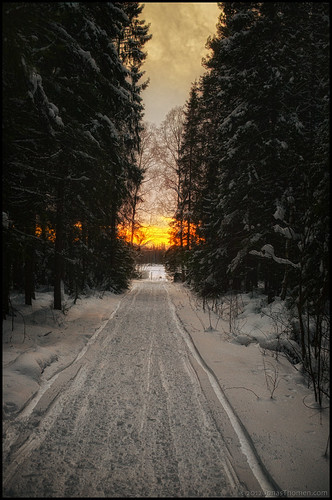 road winter sunset snow forest evening vinter skog snö väg solnedgång 7ex1ev