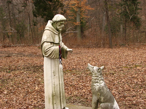 St Francis and the Very Bad Dog by paynehollow