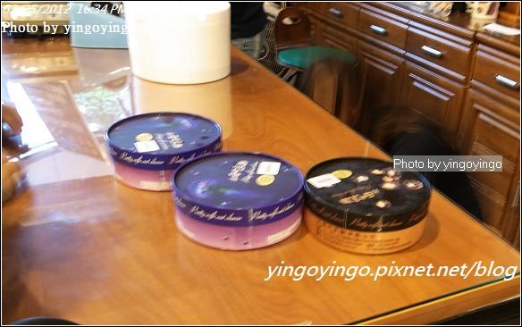台中市北屯_水母吃乳酪20120225_R0059968