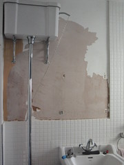 Bathroom paint peeled-off
