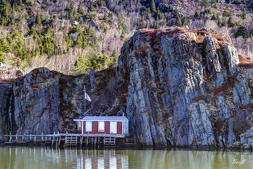 Fishing Stage - Quidi Vidi