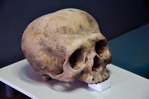 Museo Regional Chiapas - Arqueología (35)