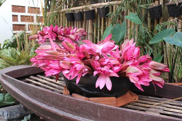 20120113_1763_lilies