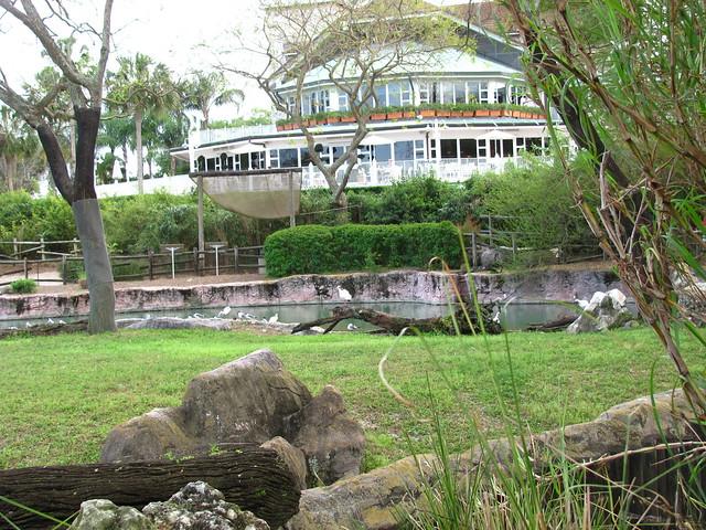 Busch Gardens Tampa 182 Flickr Photo Sharing