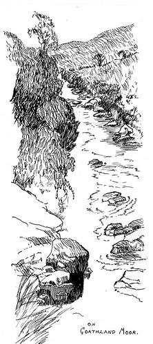 Goathland Moor