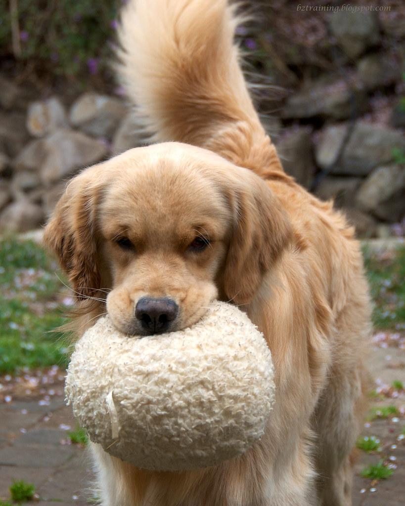 My Ball