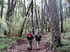 Hiking Chile Amity Tours 14