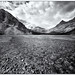 Bow Creek Black & White by Panorama Paul
