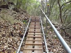 太戸の滝 #7