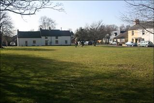 Horses on Hauxton village green