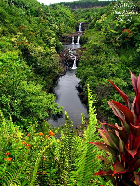 Umauma Falls from the overlook