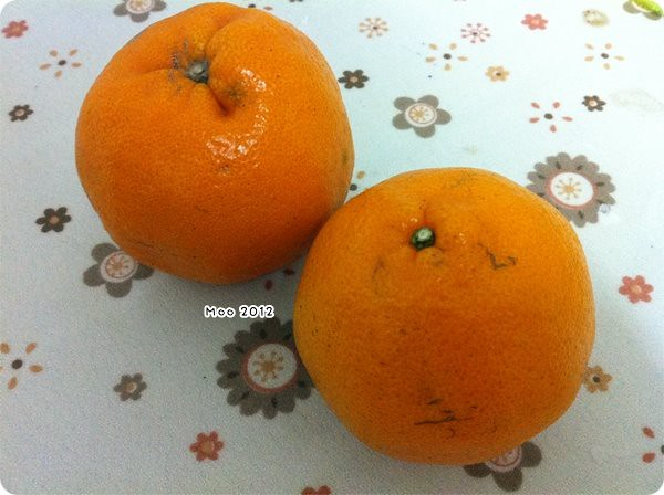 10102 台灣水果-2
