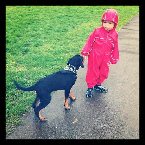 Dylan making friends with doggies in the rain :)