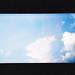 sky cotton.