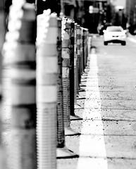 2012-02-13信義路、永康街、大安森林公園