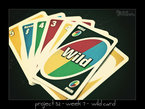 Project 52 - Week 7 - Wild Card