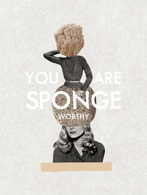 Sponge Worthy