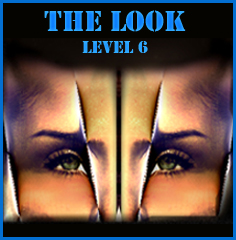 award the look 6