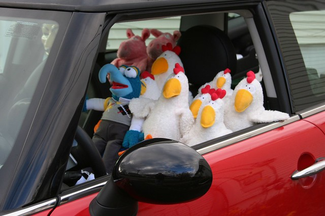 Gonzo Takes Some Chicks For A Joyride