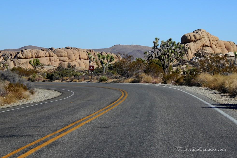 Open Road, Joshua Tree National Park