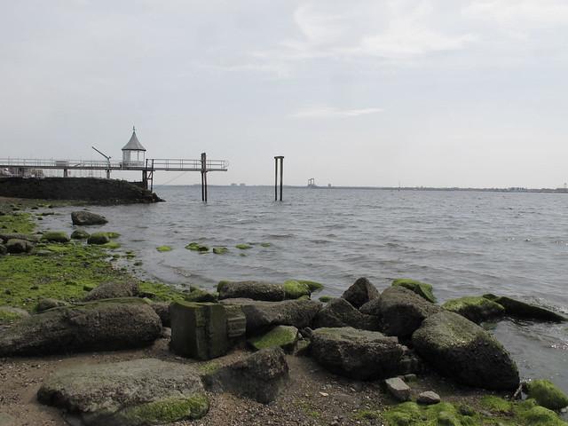 10 reasons why i love the bronx tracy kaler 39 s new york for City island fishing