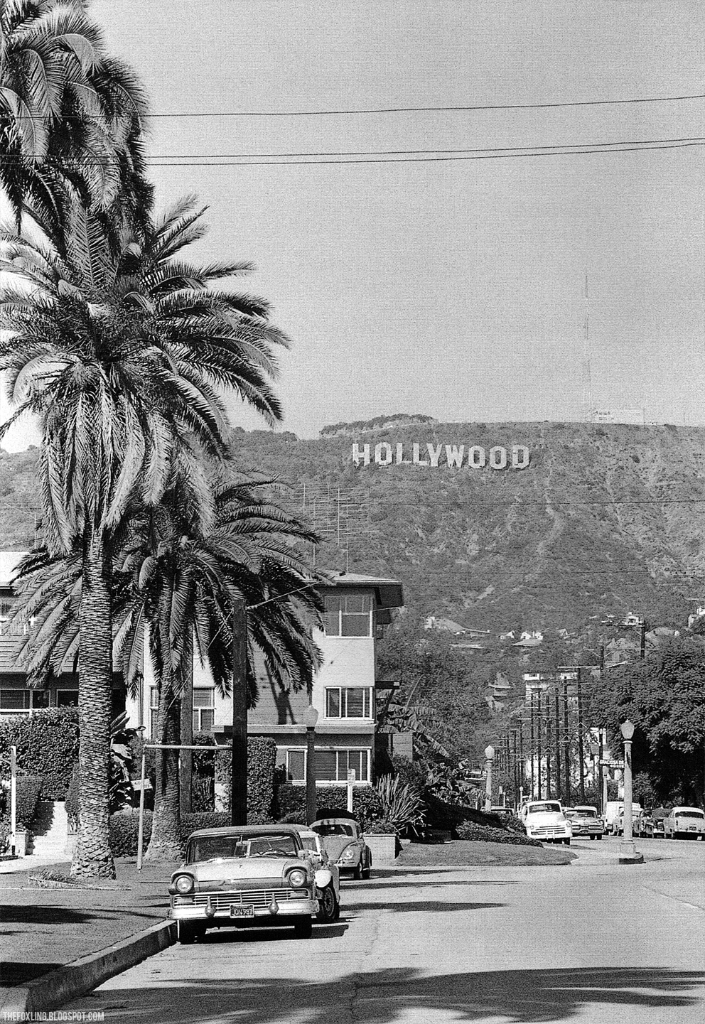 1000 Images About Hollywood Sign Walk Of Fame