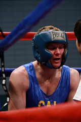 championship, individual sports, contact sport, sports, amateur boxing, boxing, athlete,