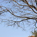 2012-01-31-13-40-39