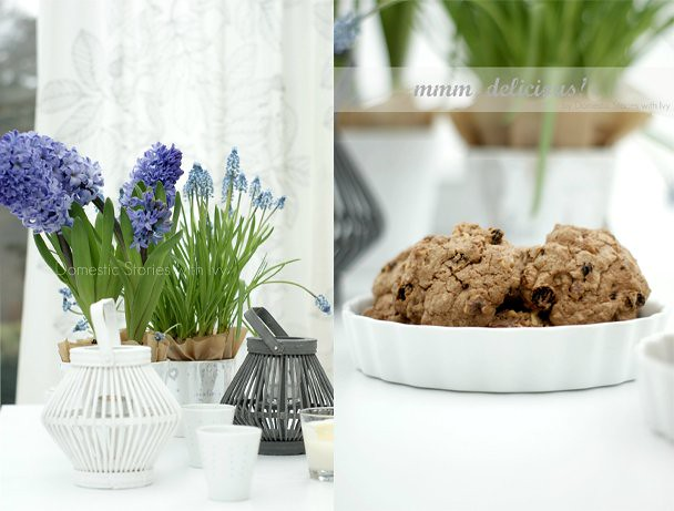 spring bulbs & cookies ~