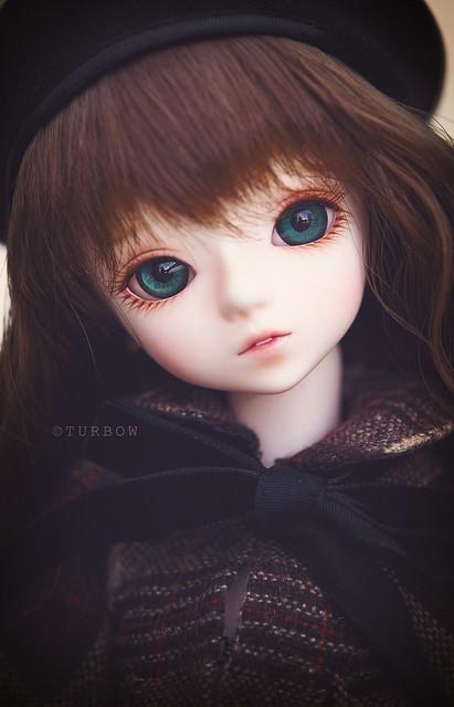 Winter Shirley