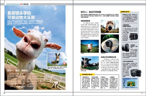 Mr Goat in Chinese photography magazine by Shenanigans in Japan