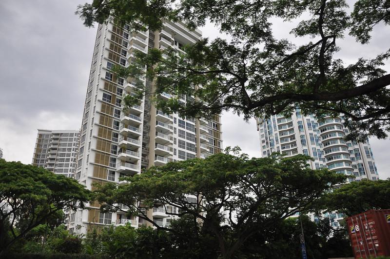 Зеленые улицы Сингапура