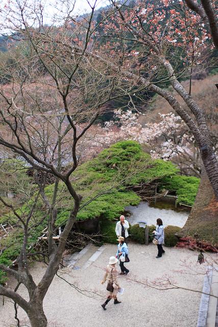 20120416-Yoshimine-dera-5
