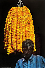 man in flower market - TOM_1463-acwMS5