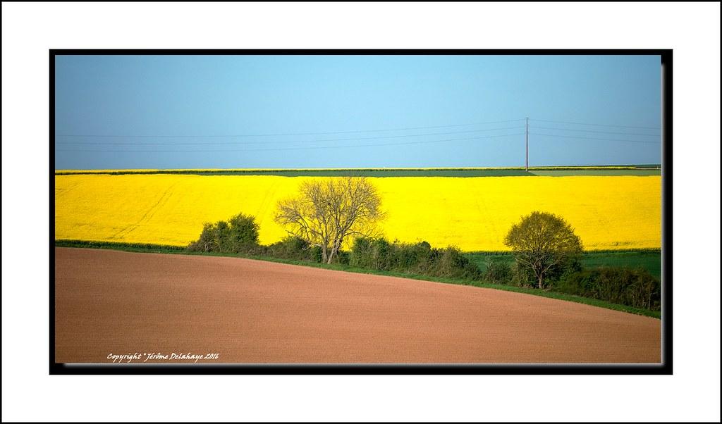 Paysage de Picardie 26748099821_c7f75697b8_b
