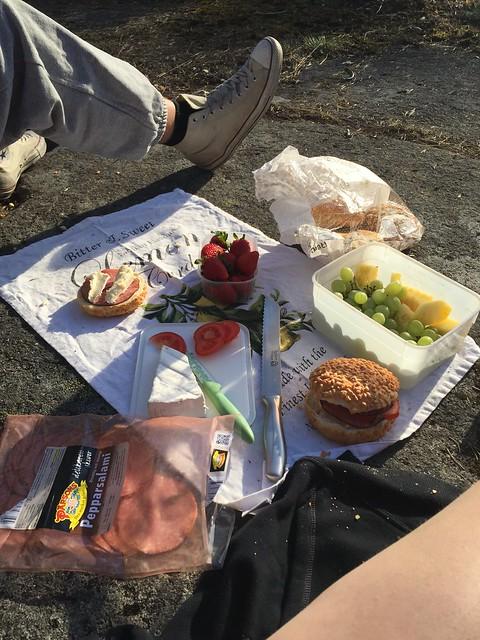 Picknick i skogen
