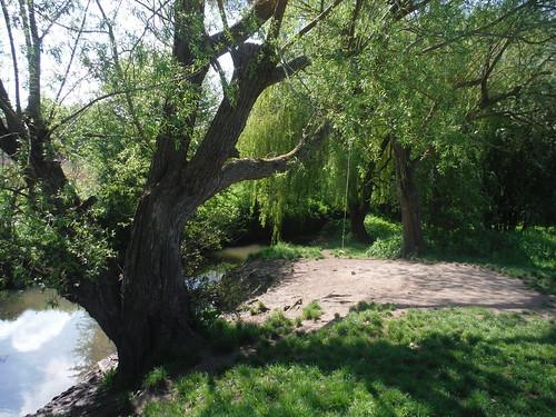 Cuttle Brook Nature Reserve