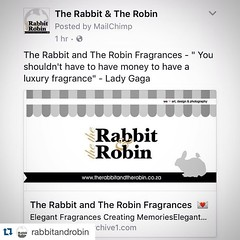 """#Repost @rabbitandrobin  ・・・ Checkout our FACEBOOK Page link to our New addition to the Family. @rabbitandrobin Fragrances """"You shouldn't have to have money to have a luxury fragrance"""" - Lady Gaga  Spoil Yourself with Elegant Fragrances For Only R140  Con"""