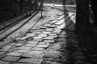 Steps in the Park