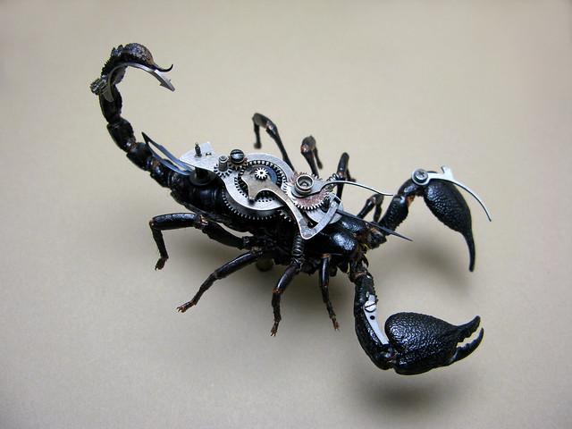 2012Scorpion1