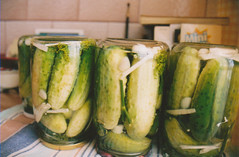 vegetable, pickled cucumber, pickling, food preservation, food, cucumber, gourd,
