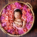 Love Blossom by babybeanportraits
