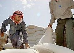 世界糧食計劃署提供食物援助給敘利亞難民。(John Wreford攝,世界糧食計劃署提供)