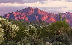 Flat Iron Mountain - Superstitions