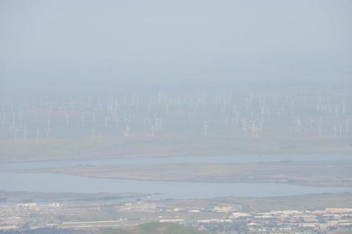 風車がいっぱい