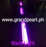 BlackLight2.www.grandpearl. (2)