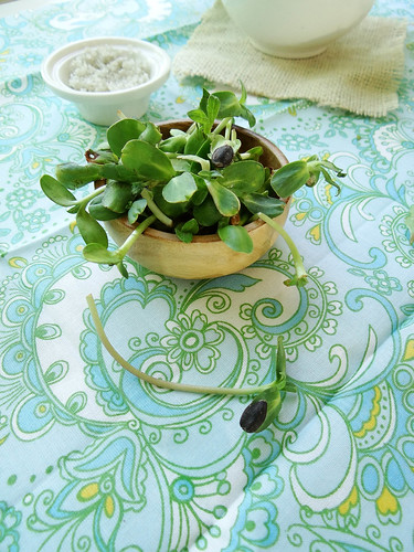 Droasted garden radish salad