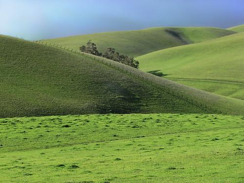 hills grassland alamedacounty doolancanyon
